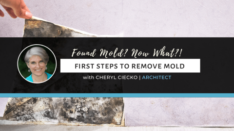 Found Mold? Now What? First Steps To Remove Mold
