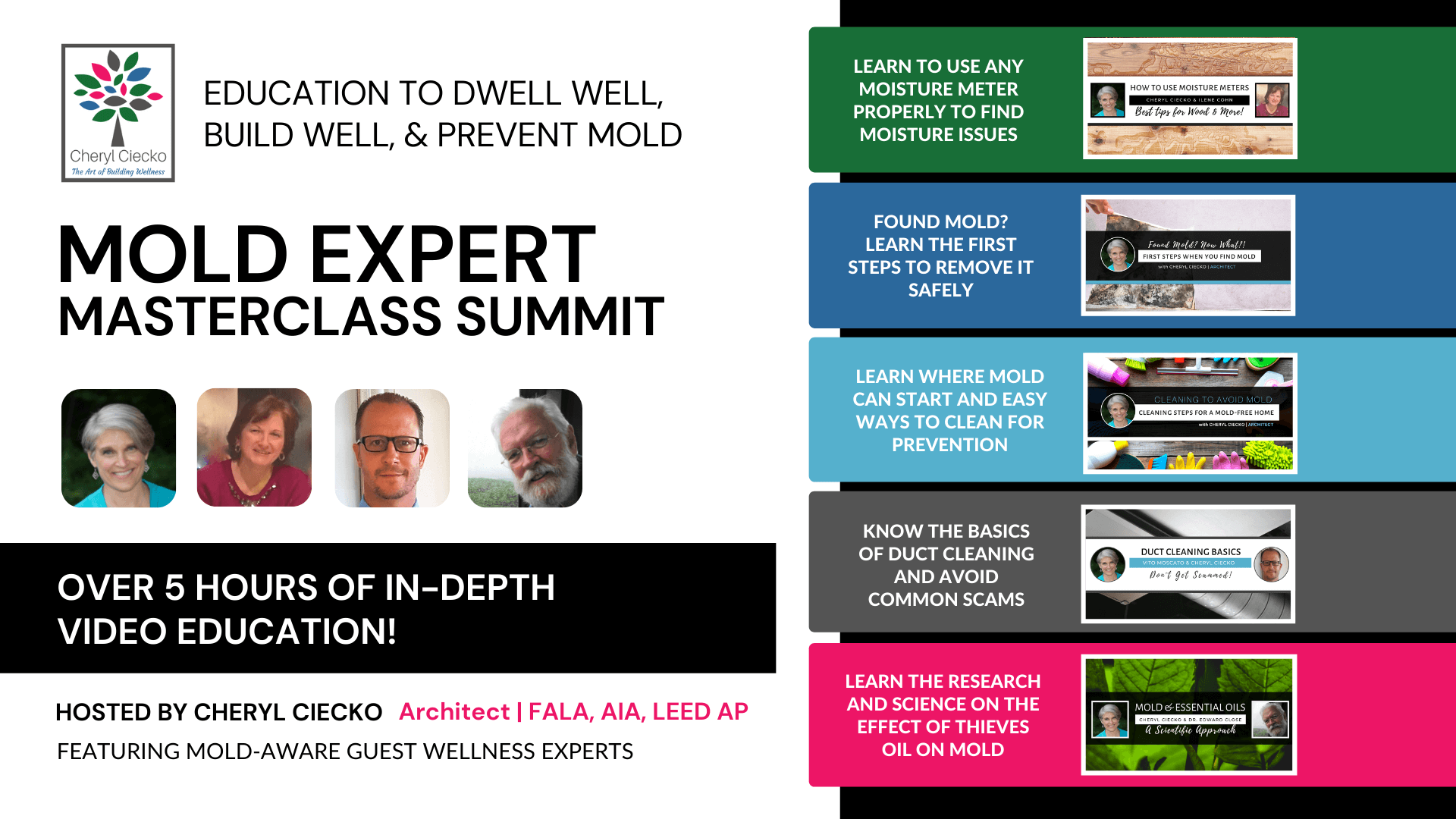 Mold Remediation and Testing. The Mold Expert Masterclass Summit