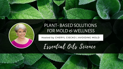 Plant Based Solutions For Mold and Wellness