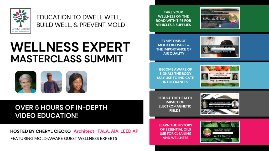 Learn the importance of maintaining clean indoor air quality, safe moisture levels, and more in this mold aware wellness expert masterclass bundle